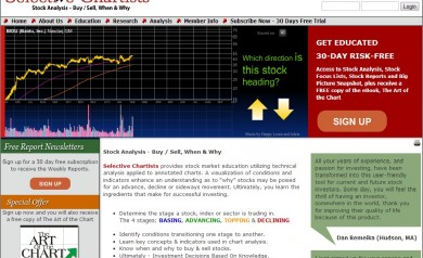 Selective Chartists Home Page Flash Presentation